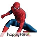 Spiderman au cinéma