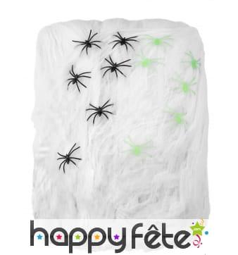 1kg de toile d araignée décorative et araignées