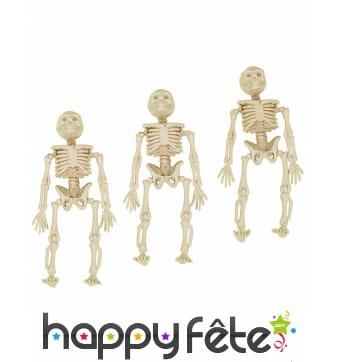 3 squelettes de 12cm à suspendre