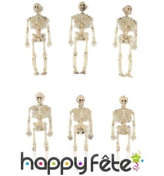 6 petits squelettes de 15cm en plastique
