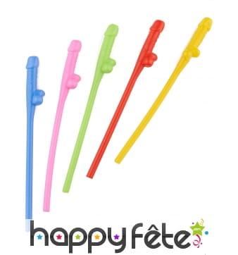 6 Pailles zizi multicolores