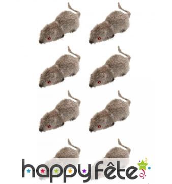 8 fausses souris de 5cm