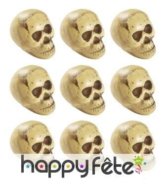 9 crânes de 5cm