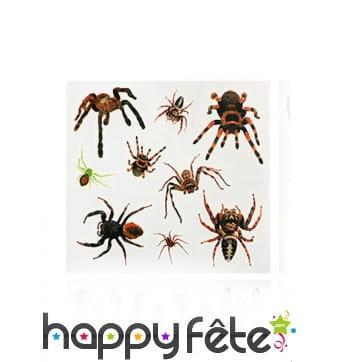 9 Tatouages araignées sur planche de 23x20cm