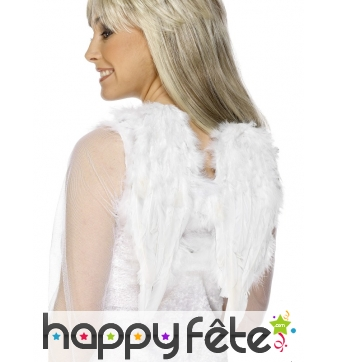 Ailes blanches en plumes ange