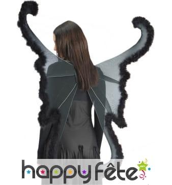 Ailes de papillon géant, couleur noir