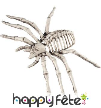 Araignée squelette décorative de 22cm