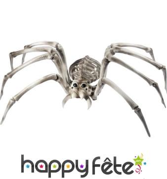 Araignée squelette géante de 54cm