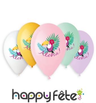 Ballons aloha toucan, par 5