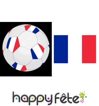Ballon de foot aux couleurs de la france, 25cm