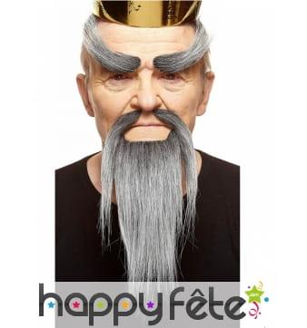 Barbe, moustaches et sourcis gris maitre chinois