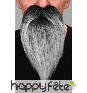 Barbe poivre et sel de savant avec moustaches