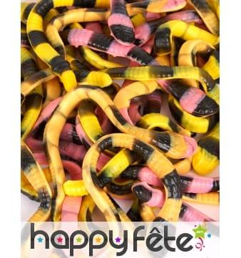 Bonbons Pit le python 1kg