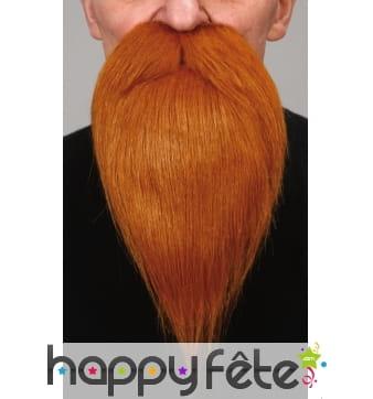 Barbe rousse de peintre avec moustaches