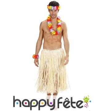 Collier, bracelets et couronne Hawaï multicolore