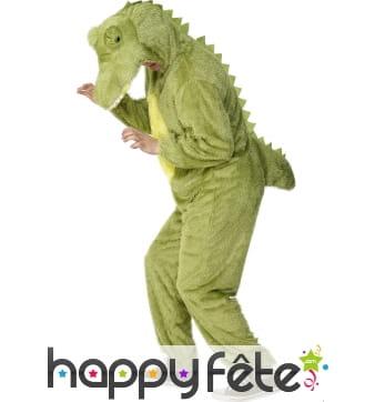 Costume crocodile