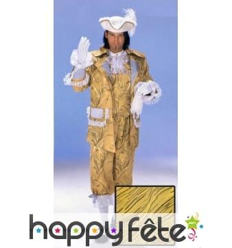 Costume Cyrano de Bergerac