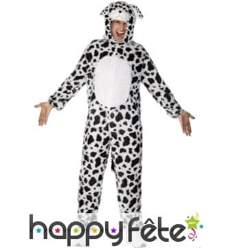 Costume dalmatien