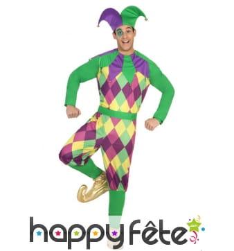 Costume d'arlequin violet vert pour homme