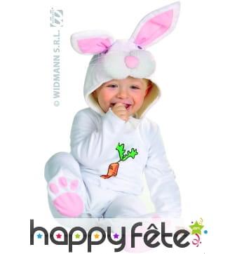 Costume de bébé lapin