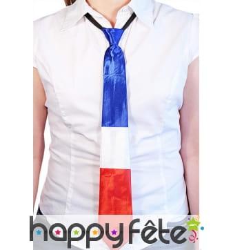 Cravate drapeaux de la France