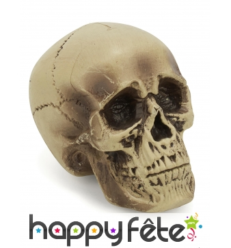 Crâne décoratif en plastique de 18cm