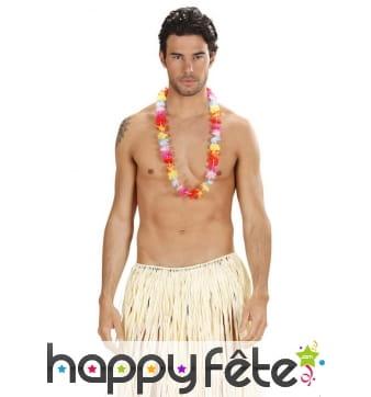 Collier de fleurs multicolores hawaiennes