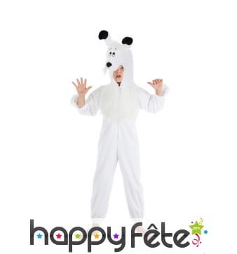 Costume de Idefix pour enfant