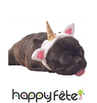 Costume de licorne pour chien