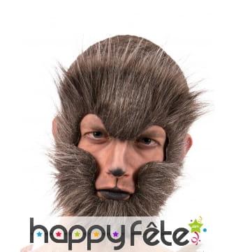 Contour de visage de loup garou en poils