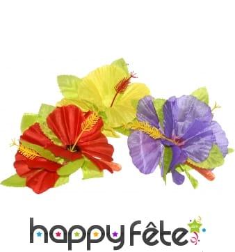 Clips fleur hawaï