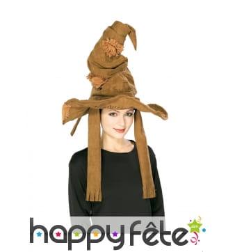 Chapeaux Harry Potter pour adulte, modèle luxe