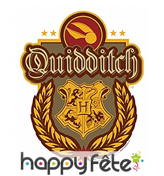 Décoration blason Quidditch, Harry Potter