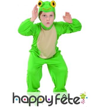 Déguisement de grenouille verte pour enfant