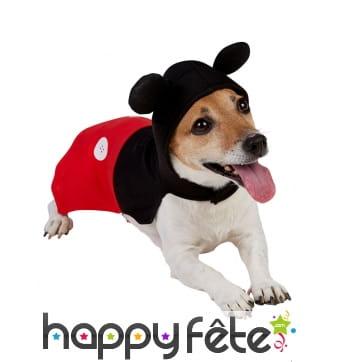 Déguisement de Mickey Mouse pour chien