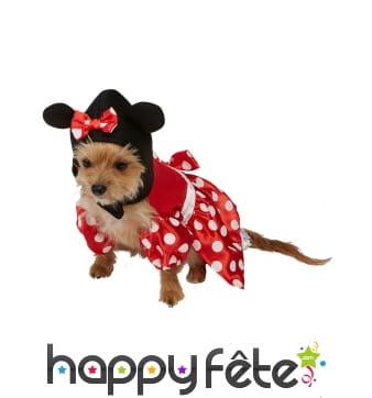 Déguisement de Minnie Mouse pour chien