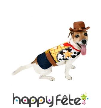 Déguisement de Woody pour chien, Toy Story