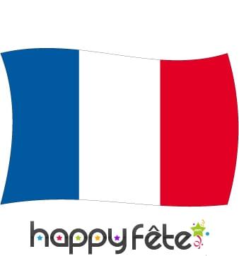 Drapeau France (150x225)
