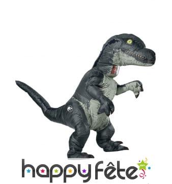 Déguisement gonflable de vélociraptor pour adulte