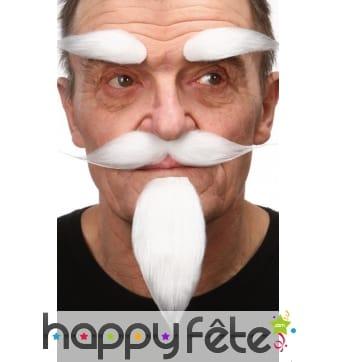 Ensemble barbichette, moustaches sourcils blancs