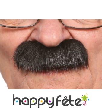 Epaisses fausses moustaches noires