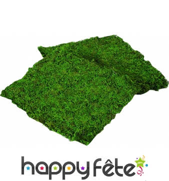 Fausse herbe verte