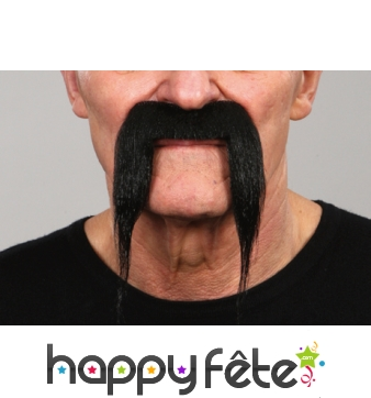 Fausses moustaches tombantes noires