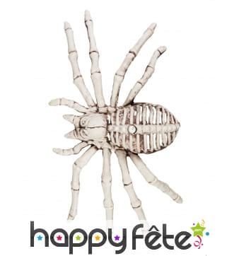 Faux Squelette d'araignée 24cm