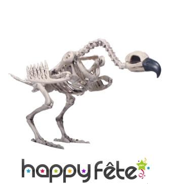 Faux squelette de vautour décoratif
