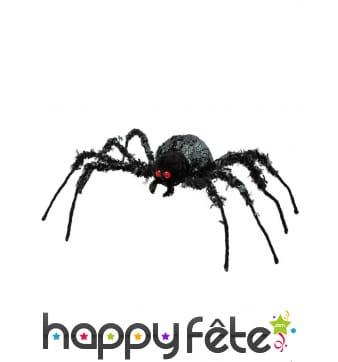 Grande araignée noire aux yeux rouges, 43 x 46 cm