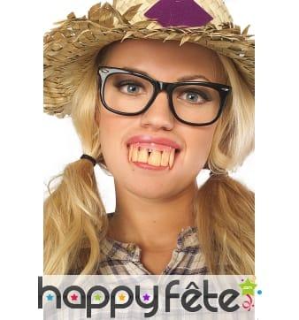 Grandes et longues dents de montre en dentier