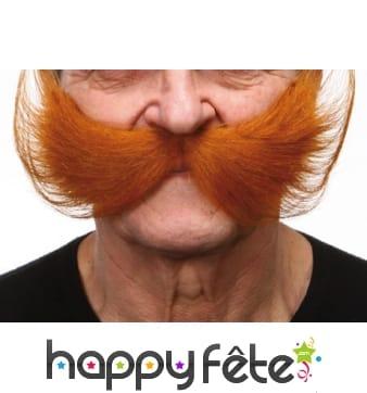 Grosses moustaches américaines rousses