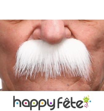 Grosses moustaches blanches de papy