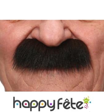 Grosses moustaches brunes de papy